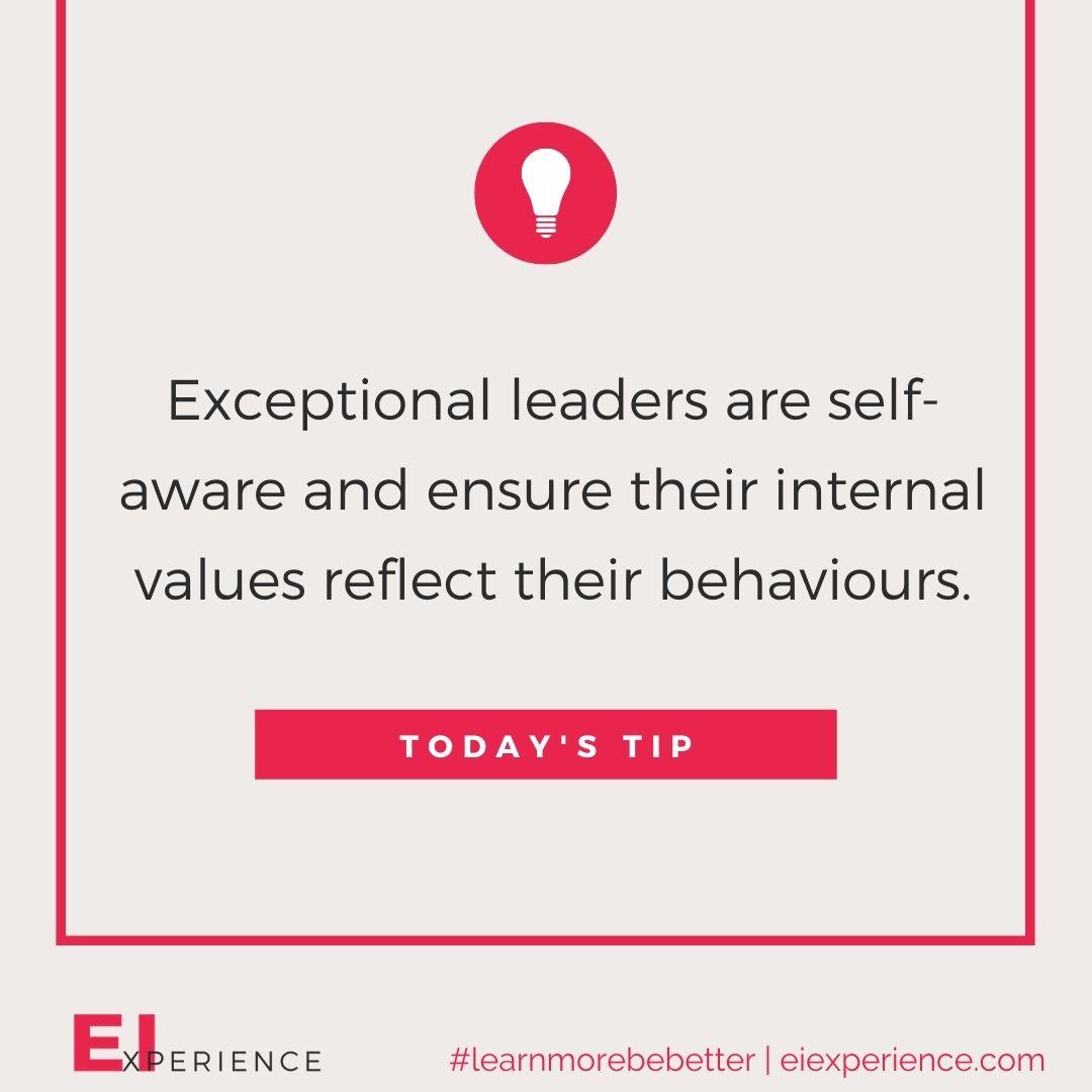 Authentic Leadership EI Insight